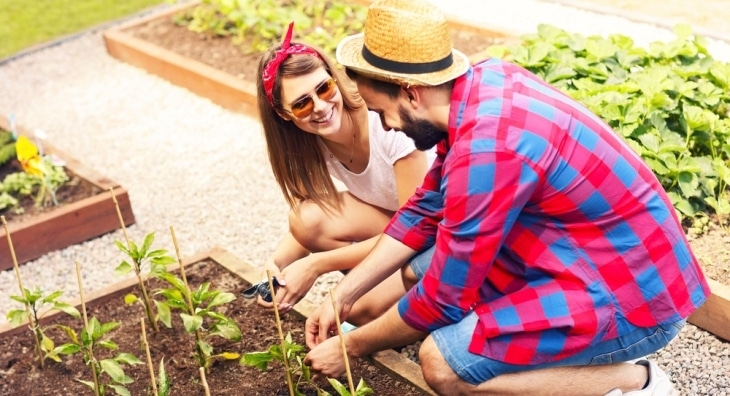 Young couple gardening